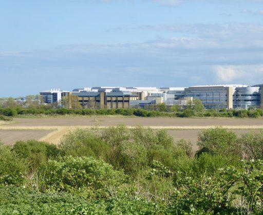 Pfizer complex, Sandwich, Kent